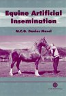Equine Artificial Insemination