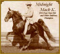 Midnight Mack K.-  1951 Four Year Old Champion